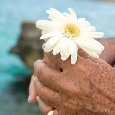 flower-half.jpg